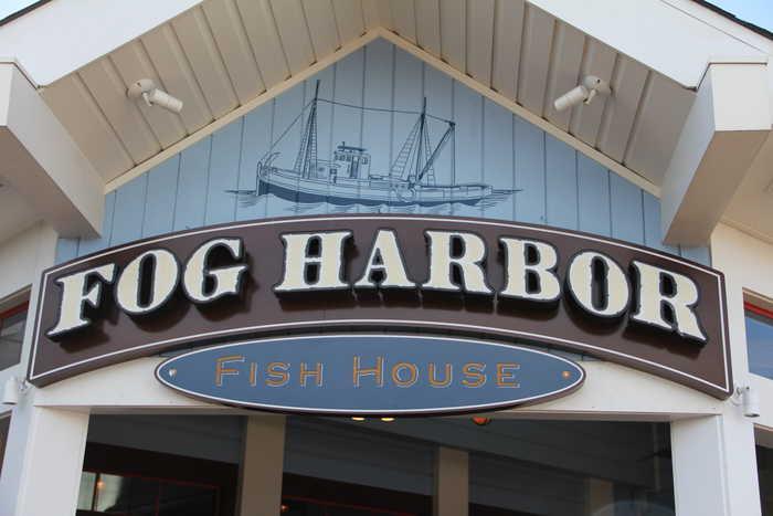 Fog Harbor
