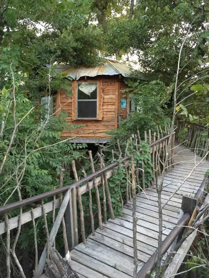 Majestic Treehouse in Savannah's Meadow