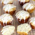 Glazed Lemon Poppyseed Muffins are made with plenty of fresh lemon juice and zest, some lemon yogurt and sour cream, topped with a fresh lemon glaze.