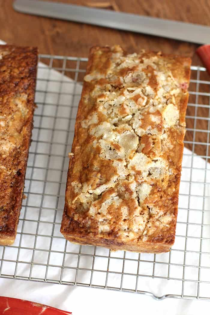 Rhubarb Nut Bread combines tart rhubarb with brown sugar, oil, nuts, and other ingredients - to make the most delicious quick bread of all time!   suebeehomemaker.com