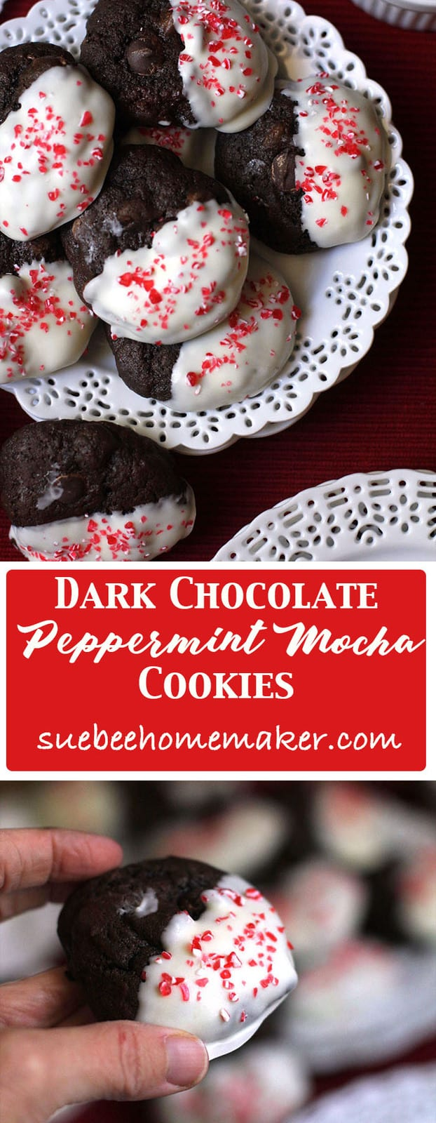 Dark Chocolate Peppermint Mocha Cookies take a simple chocolate cookie and make it festive by dipping in white chocolate topped with peppermint sprinkles! | suebeehomemaker.com