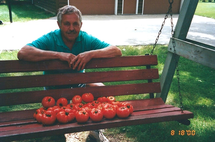 A picture of my Dad kneeling next to a porch swing that is loaded with garden tomatoes.