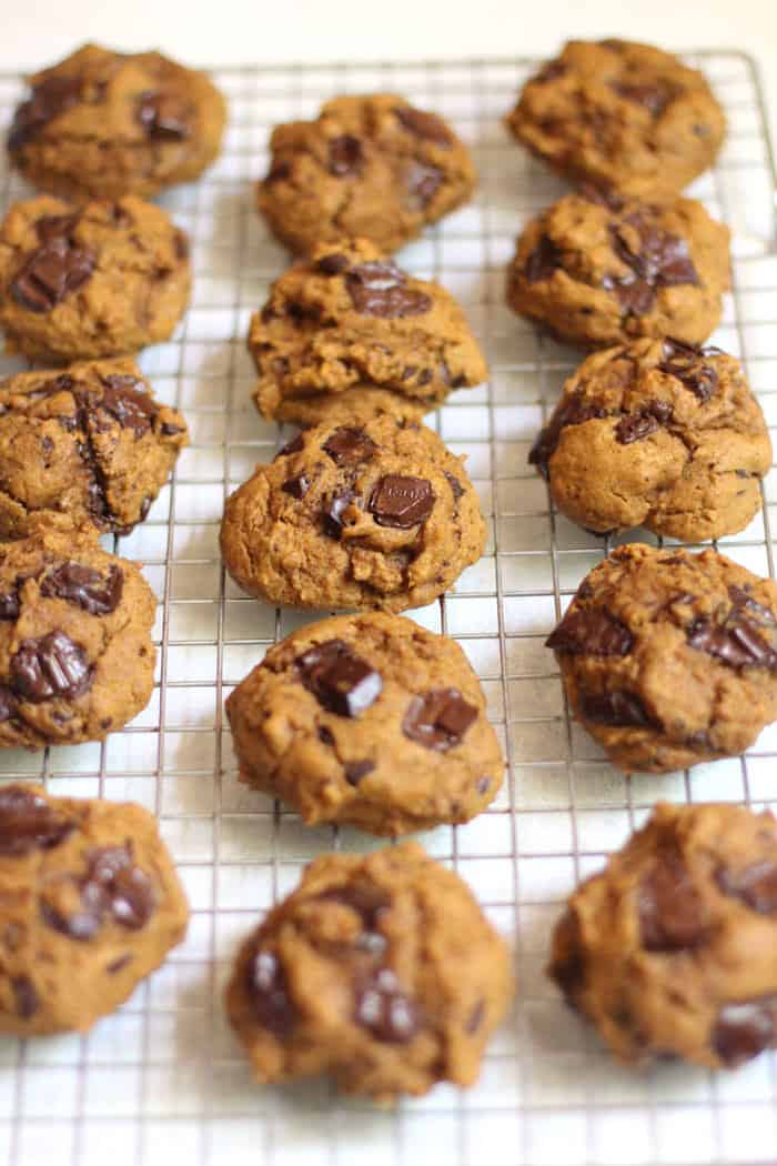 Side angle shot of pumpkin chocolate chunk cookies on a cooling rack on white background.
