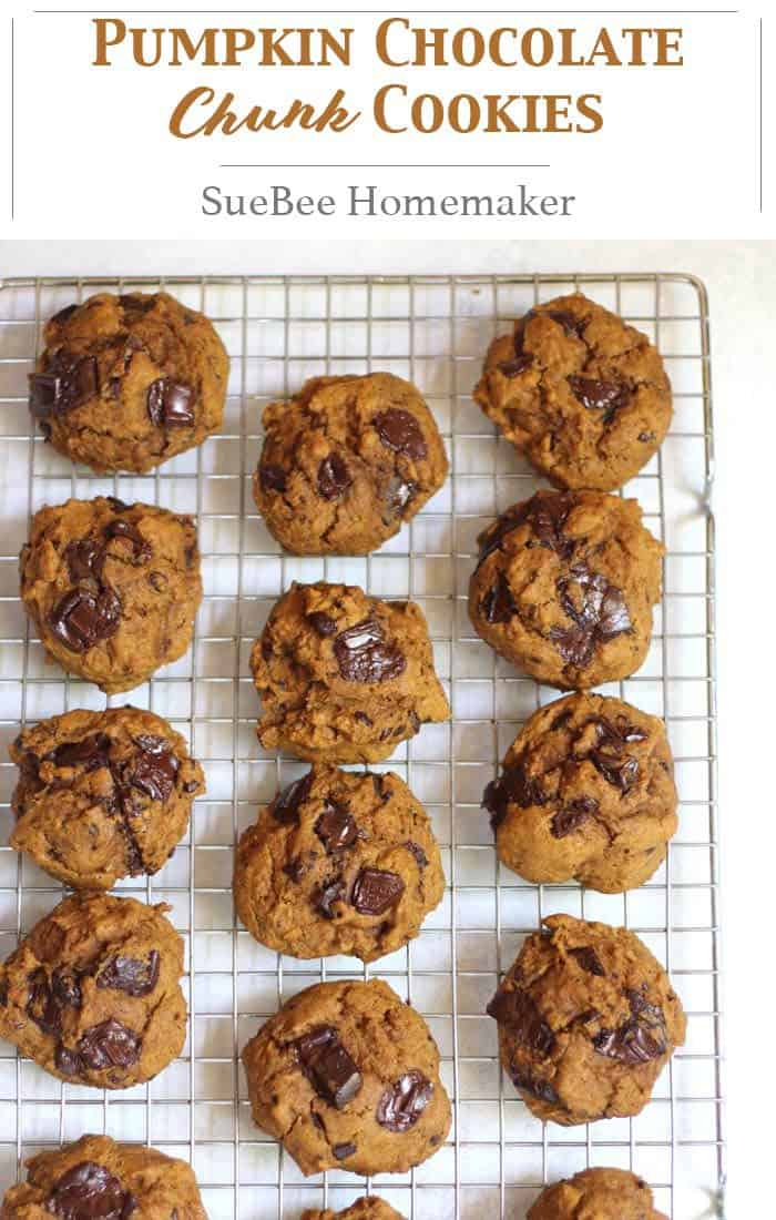 At under 150 calories per cookie, these Pumpkin Chocolate Chunk Cookies will be a regular fall treat. Using less sugar allows for all of those decadent chocolate chunks! | suebeehomemaker.com | #pumpkincookies #chocolatechunks #cookies #falltreats #dessert