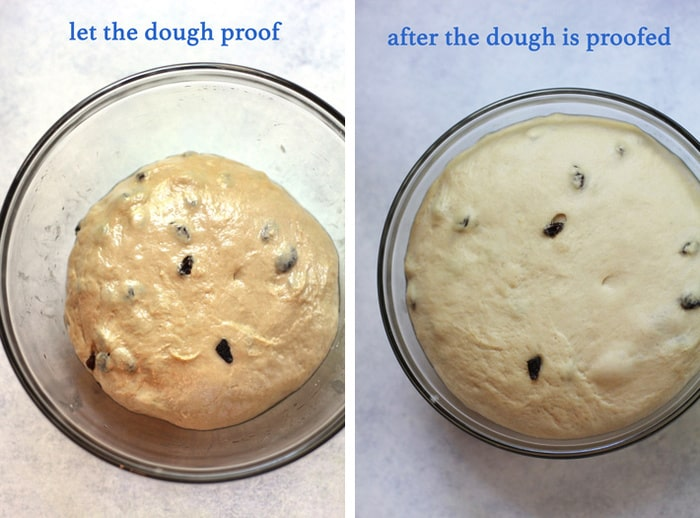 Overhead process shots of the cinnamon roll dough before ricing and after rising, on a white background.
