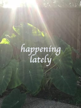Happening Lately – August 2018