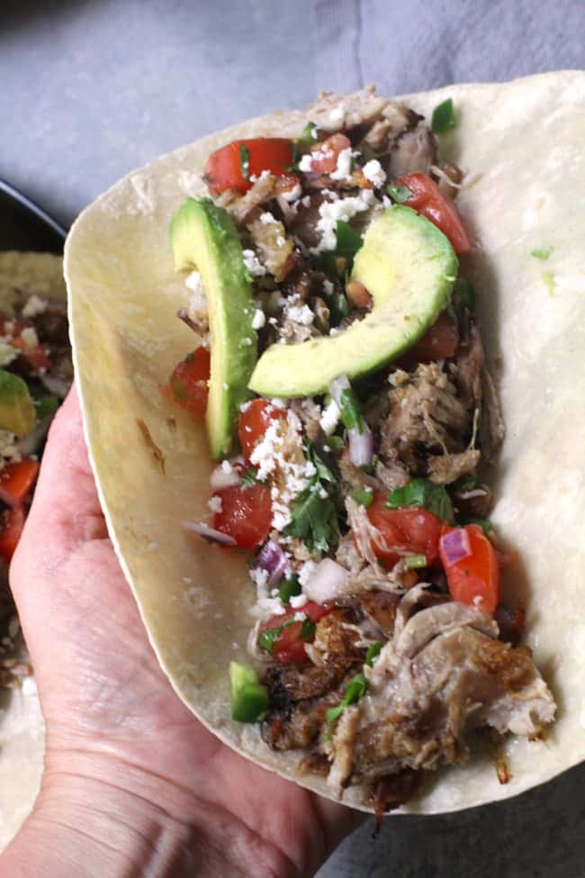 Shot of my hand holding one large crispy pork carnita, topped with pico and avocado