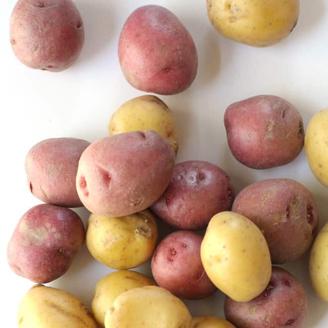 Overhead shot of red and yellow baby potatoes, on a white background.