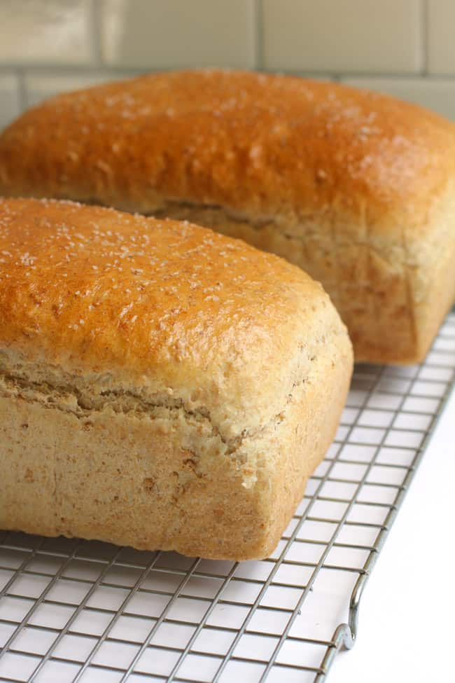 Side shot of two loafs of cracked wheat bread, on a wire cooling rack.