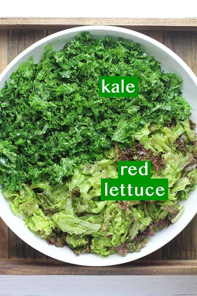 A large white bowl with half kale leaves and half red lettuce.