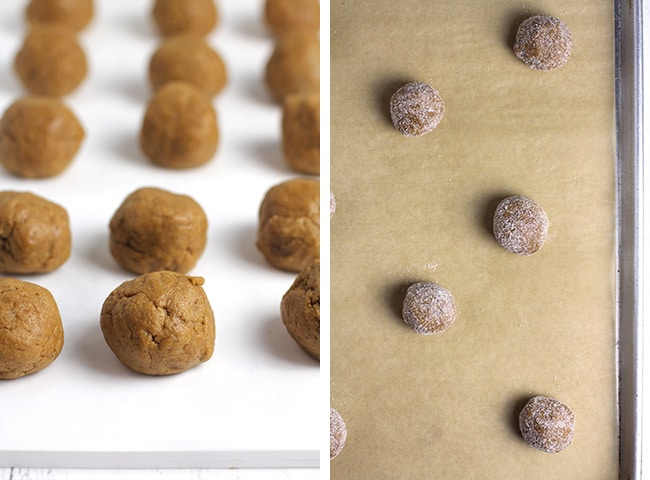 Collage of 1) the gingersnap cookie dough balls on a white board, and 2) a baking sheet of gingersnap cookie balls with sugar.