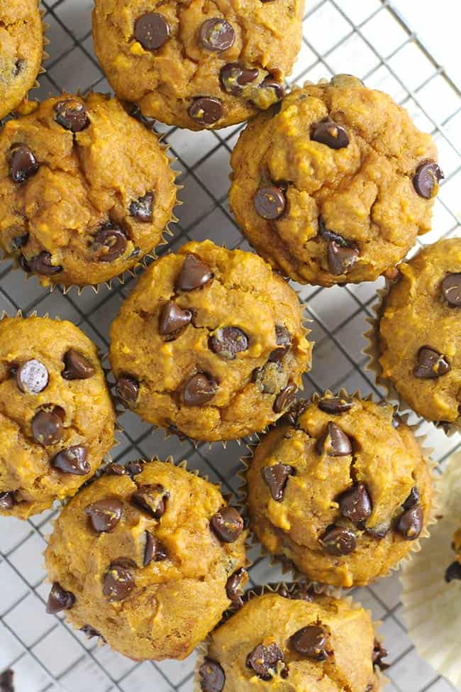 Pumpkin chocolate chip muffins on a cooling rack.