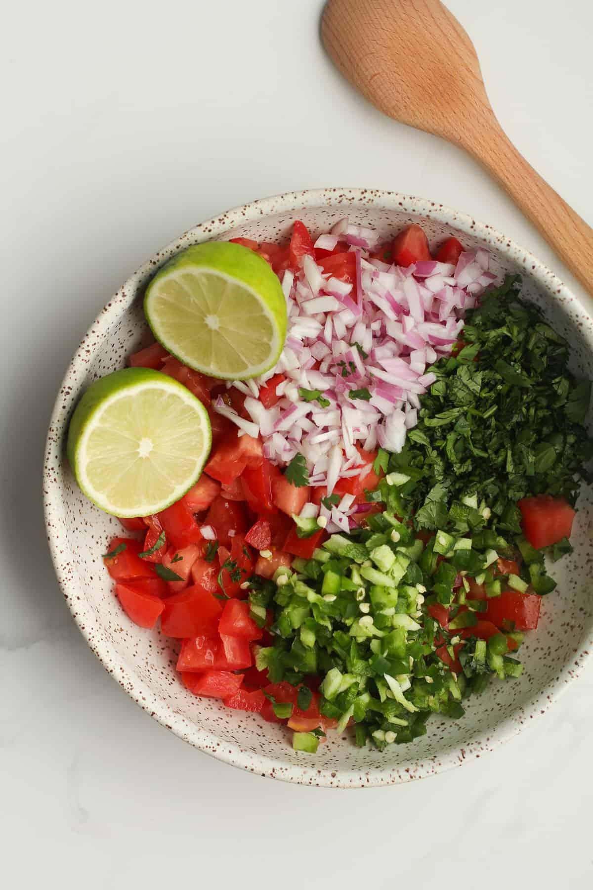 A bowl of the Pico de Gallo ingredients.