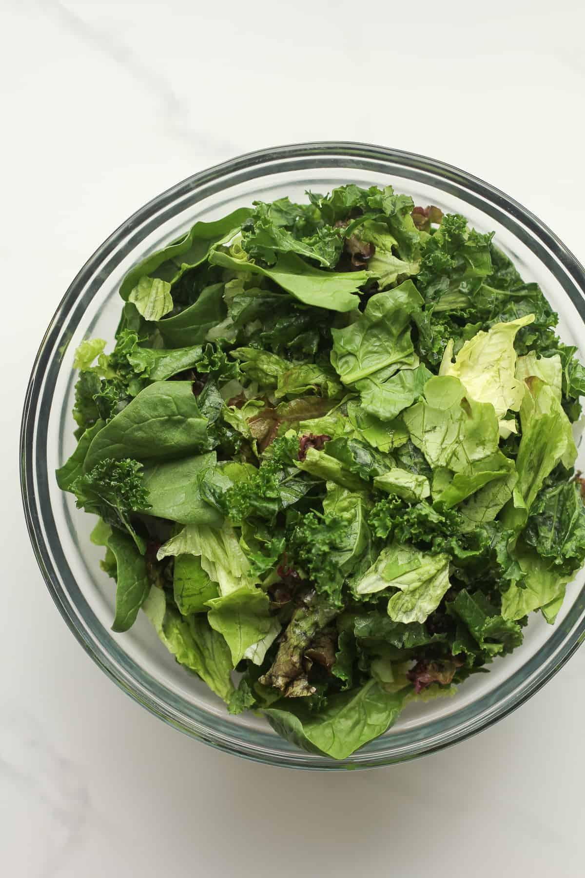 A bowl of a variety of salad greens.