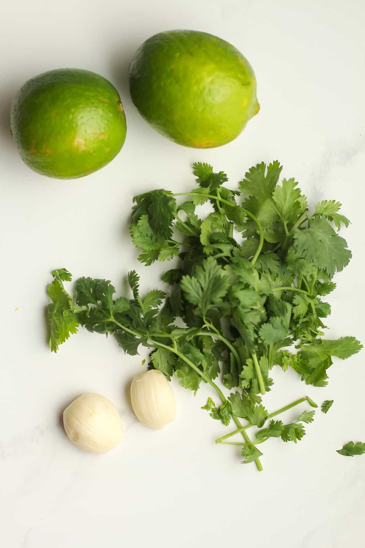 The cilantro, lime, and garlic.