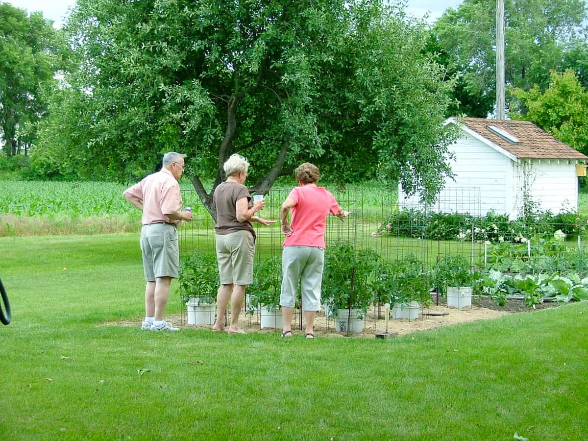 Mom and the Illgs looking at the garden.